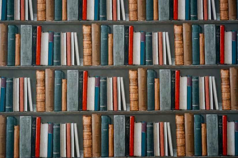 books on bookshelves